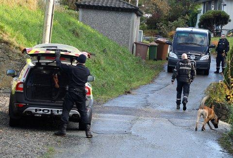 HUNDEPATRULJE: Politiet rykket ut til Vormedal med flere patruljer, blant annet en hundepatrulje for å lete etter den mistenkte etter voldsepisoden. Vedkommende er nå pågrepet.