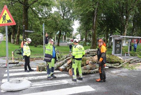 MANGE I SVING: Ingeniør Ole Christian W. Øvrebø i Haugesund kommune, stedsansvarlig Dag Amdal, Even Sørhus og Jakob Langåker i Vassbakk & Stol.