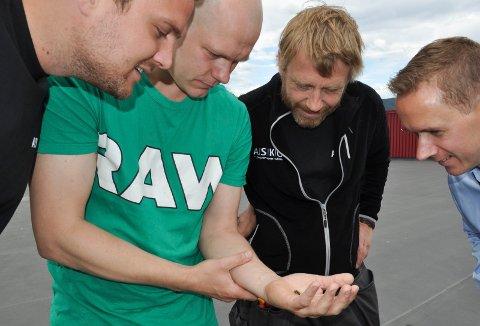 Peder Thomas Ivesdal har lært Jacob Lindstrøm, Anders Jensen og Marius Lindvik mye om bier etter at Asko satt opp to kuber på taket.
