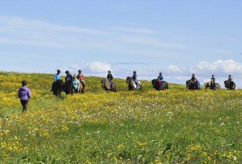 Sommerfølelse: Gruppe nummer to kommer ridende tilbake til Hov Hestegård etter en runde i nærområdet.alle foto: Sander Lied Edvardsen
