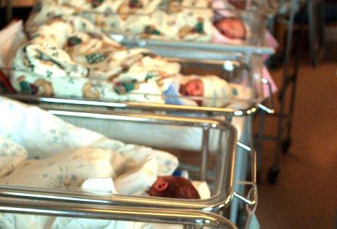85 så langt: I skrivende stund er det født 85 barn på Kalnes i juli i år. Avdelingen har et fødselsestimat på 269 for den heteste sommermåneden. Arkivfoto: Nils  H. Ånstad