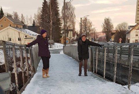 IKKE BRUKBART: Kirsti og Olaug Bergum er skjønt enige om at det er risikabelt å ferdes over gangbrua på Biri så lenge den ikke blir strødd eller brøytet.