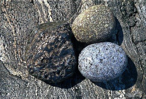 FJELLGRUNNEN  De tre rullesteinene plassert på et stykke svaberg på Løvall på Brunlanes-kysten representerer de fire hovedtyper av bergarter vi har i LARVIK. Steinen til venstre er av sedimentær (lagdelt) bergart. De to til høyre er av lavabergarten rombeporfyr (over) og dypbergarten larvikitt (t.h.), mens underlaget består av såkalt båndgneis dannet med basis i selve urfjellet.