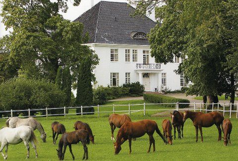 Gården har blant annet 50 stallbokser og egen ridehall. Her ser man hovedbygningen.