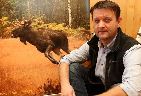 ALVORLIG: – Er det en villet politikk fra sentralt hold at landsbygda skal tømmes for folk og ressurser, spør Åsnes-ordfører Ørjan Bue, her elgbildet tatt av Frida Lilleberg, et bilde som vant kommunens store fotokonkurranse.