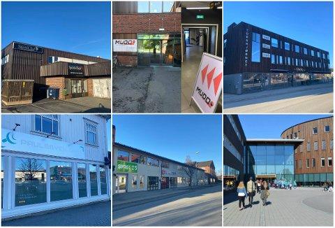 POPULÆRT TILBUD: Over 4.500 elverumsinger er medlemmer hos de fem største treningssentrene i byen. Øverst f.v.: Family Sports Club sentrum, Mudo Gym, Fysio 3, Paulsbyen Gym, Sprek 365 og Family Sports Club Terningen Arena.