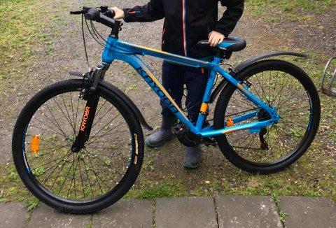 Denne sykkelen forsvant fra Skjørtorpveien i Rakkestad, fredag.