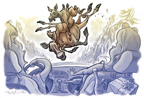 Surrealistisk: De fire feststemte damene på vei til 50-årslag fikk seg litt av et sjokk da tre elger falt ned fra oven.