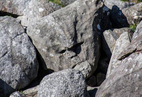 «Steinansiktet» ligger i umiddelbar nærhet til stien, og er ikke særlig vanskelig å finne. I nærheten ligger det også en grotte, som er langt vanskeligere å få øye på.