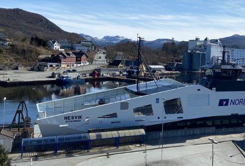 FORSLAG: Bygdeliste-politiker Snorre Walde mener at det er god plass til gjestehavn i Tauravågen. Da dette bildet ble tatt i vår var ei ny Hjelmeland-ferje innom Tau på besøk.