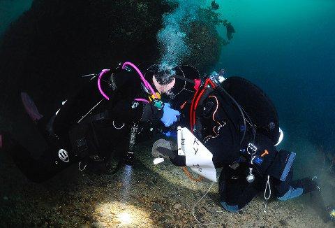 UNDERVANNSKYSS: Her på 25 meters dyp ved vraket av båten «Fisk» frir Øyvind Eriksen Sæther til sin Aiza Marrie Alvarado. Resultatet ble som ønsket.