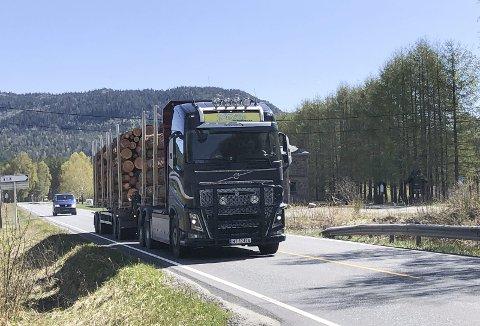 Mange tømmerbiler: Årlig kommer det nå ca. 7.000 vogntog med tømmer til Bergene Holms sagbruk her ved Simonstad, og behovet for tømmer vil øke i årene som kommer, uavhengig av om Biozin-fabrikken realiseres, ifølge Bergene Holm.Foto: Øystein K. Darbo Bildetekst
