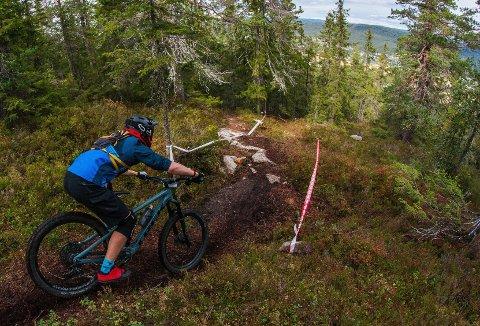 RASKEST NED: Enduro går ut på å kjøre flere varierende etapper, som oftest lagt i alpinanlegg. Lørdag ble det første rene ungdomsenduro arrangert av CK Nittedal i Varingskollen. På bildet er det Torben Hjelset som utfordrer bakken.