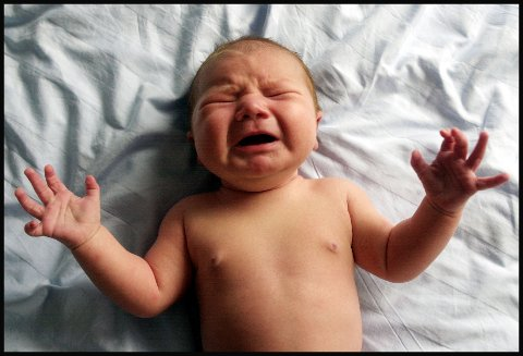 Nyfødt baby gråter. Guttebaby. Gutt.  Foto: Lise Åserud / SCANPIX (FRB)