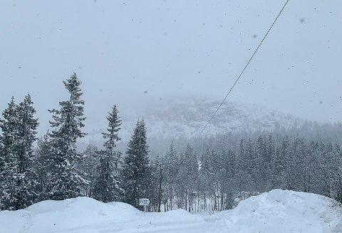VINTER: Torsdag morgen var det full vinter på Haglebu. Det ligger så mye snø i terrenget, at alt ligger godt til rette for at det skal bli en snørik påske.