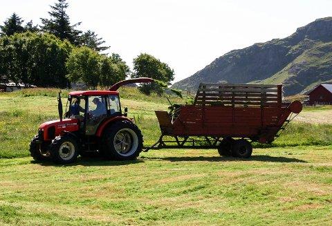 Jordbruket kan i snitt vente ein inntektsnedgong på 23.500 kroner per årsverk i 2019, i følgje Budsjettnemnda for jordbruket.