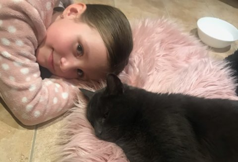 SÅRT SAKNA: Kosepusen Mio Eden Hazard var sårt sakna av Sofie Fagerheim Aase (7) og resten av familien medan han var vekke. No er dei glade for å ha fått han att.