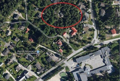 GODKJENT: Planene om å sette opp åtte boenheter i dette området på Slevik, fikk flere naboer til å levere inn klage på bystyrets vedtak. Klagene har imidlertid ikke fått medhold hos Fylkesmannen. Slevik skole nederst i bildet til høyre.