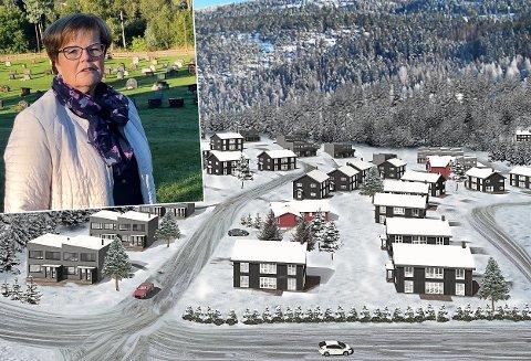SLIK KAN DET BLI: Bildet er fra et dronefoto sist vinter og viser mulighetene for hvordan Hadeland boligutviklings planer for Viubråtan kan bli.