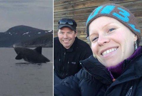 UVENTET SHOW: Svenn Are Johansen og Emelie Våtvik fikk et plutselig møte med denne haien, da de var ute og fisket utenfor Sørøya i helga.