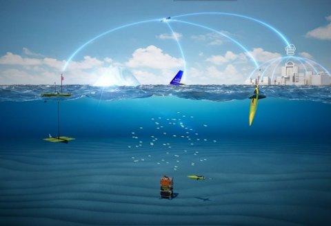 DRONER TIL HAVS: Ubemannende plattformer samler feltdata. Fra venstre: Wave Glider, Sailbuoy og Seaglider.