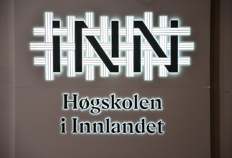 NY VISUELL PROFIL: HINN, Høgskolen i Innlandet får mandag ny profil, som blant annet skal visualisere samarbeid på kryss og tvers.
