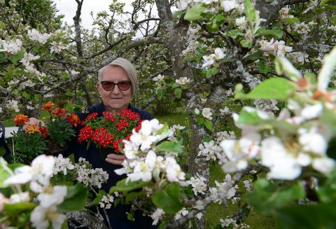 SER BRA UT: – Agesommeren er godt i gang, og det lover bra, sier Karin Bredesen, her midt i epletreet med oransje fløyelsblomster og røde Verbana i hånda.