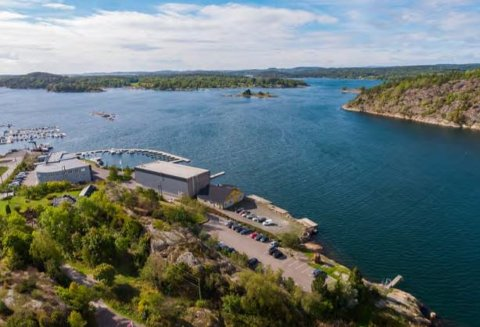Hesnes Group, ved Hesnes Holding, ser på muligheter for å bygge opp mot 70 boliger langs sjøen i Tenvik og sier at de ønsker å bidra til å lage helårsboliger.