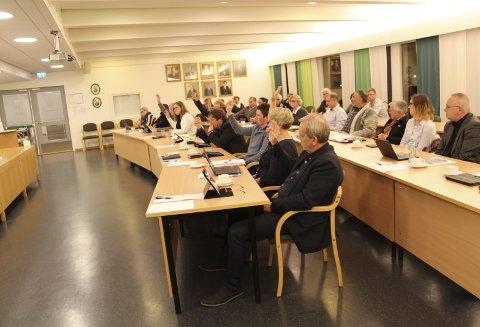 13 mot 12: Med knappest mulig margin ble flertallet for rammene til ny kulturskole sikret. Senterpartiet, Frp, Høyre og én Ap-representant stemte for å utsette rammespørsmålet.