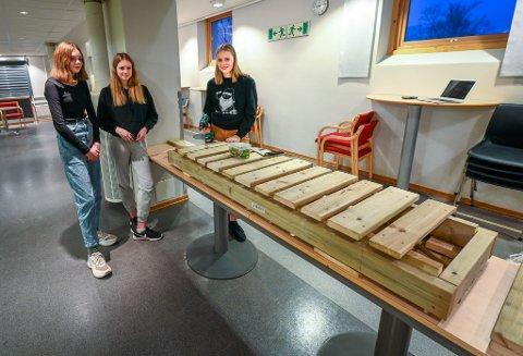 Henriette Gudding (f.v), Kristine Strømøy og Annie Isaksen er i full gang med å snekre klopper, som etter hvert skal fraktes til Virvassdalen. de har sammen med medlever snekret mellom 60 til 80 meter med klopper så langt.