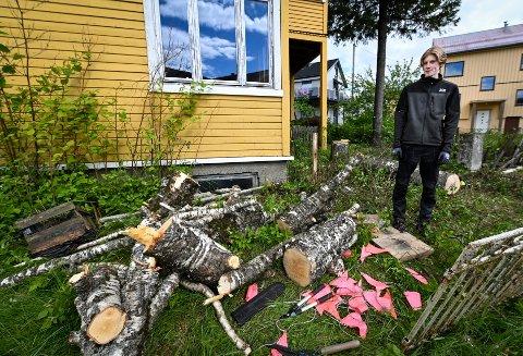 Zar Eiendom har fått tillatelse til å skoge enkelte trær på eiendommen til Vallagården. Her er Henrik Solheim Enstad i gang med ryddingen. Han har sommerjobb i eiendomsselskapet.