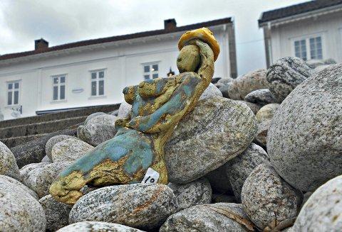 PÅ STEINENE:  «Sommergjesten som overvintret» har mange lagt merke til i Holmsbu.