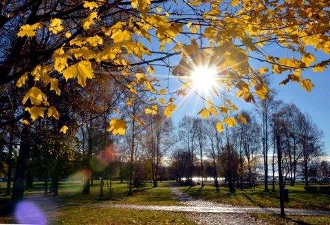 HØSTSOL: Tønsberg har i vente en helg med strålende høstsol – og ikke en dråpe nedbør.