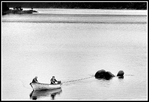 Fotoblikk, 1988, bildumping i Mingevannet, Johnny Norèn og Arnulf Hansen tauer inn en bil