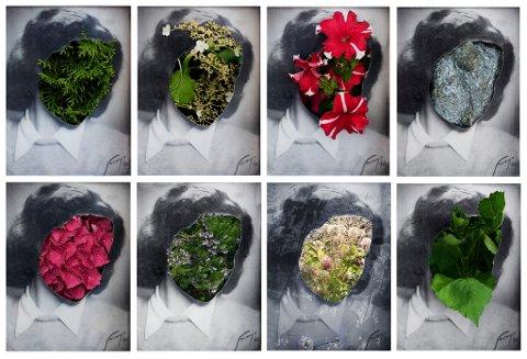 Bilder fra Katinka Goldbergs prosjekt Shumer Alef som vises på Trondheim kunstmuseum.