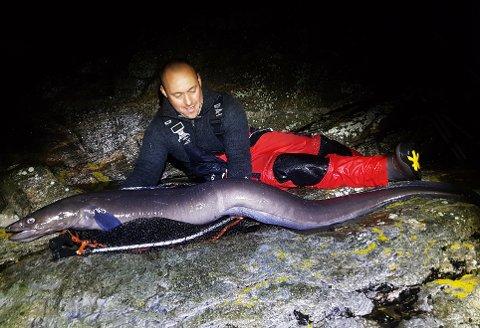 FANTASTISK FANGST: Artur Klavins med havålen på 25,65 kilo som han tok på stang fra land i Øygarden i helgen.