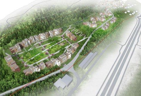 FORESLÅR BYGGING HER: Slik ser Salutaris Eiendom for seg at skogsområdet mellom Rolvsøyveien og lysløypa kan bygges ut med 650-700 boliger. Utbygger understreker at dette er en foreløpig skisse.