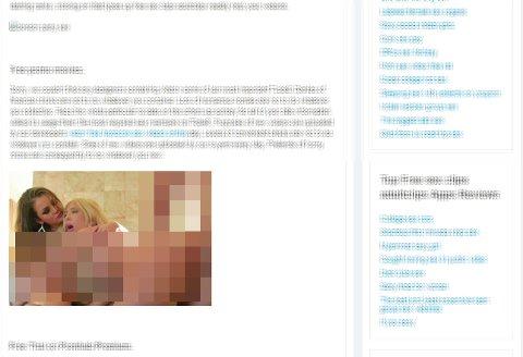 MISVISENDE: Nettadressen indikerer at innholdet på siden handler om skolen. I stedet er det noe helt annet på siden. Foto: Skjermdump