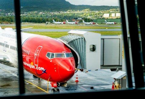 PÅ VEI OPP: Flyselskapet Norwegian har vært gjennom tøffe tak siden pandemiens start. Nå starter gjenoppbyggingen.
