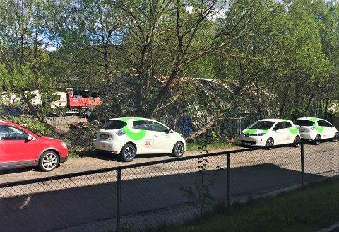ULOVLIG: I Leirskallsvingen står det ulovlig parkerte bybiler, og de blir stadig flere. Hvis/når parkeringsvaktene tar seg en tur, skal boten gå til de som faktisk parkerte bilene. Foto: Privat