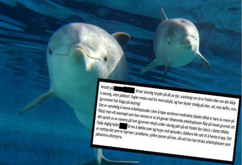 - SKYTER DELFINER: Denne meldingen mottok Fylkesmannen i Troms. Varsleren sier ifra om stadig ulovlig jakt på delfiner, oter og en rekke andre dyr. Foto: NTB/Scanpix/Skjermdump