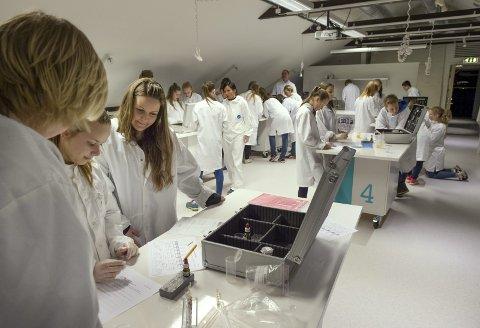 Realistiske tester: På Vitensenterets krimlab får elevene ta i bruk realistiske kjemiske analyser og tester.Foto: Asbjørn Risbakken
