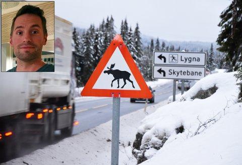 VILT PÅ LYGNA: Det har vært en rekke vilpåkjørseler over Lygna de siste ti årene. Trafikkgrunnlaget er imidlertid for lite til å forsvare montering av viltgjerde mener Statens vegvesen. Jon Rabbben Lundby innfelt.