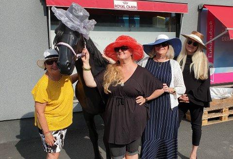 HATTEFEST: Folk i hatter i alle former inviteres til Biri Travbane lørdag 27. juli.