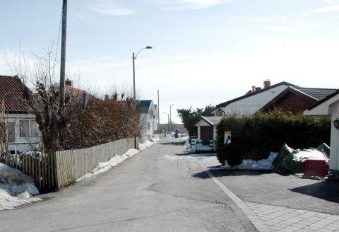 Skoleveien på Nanset