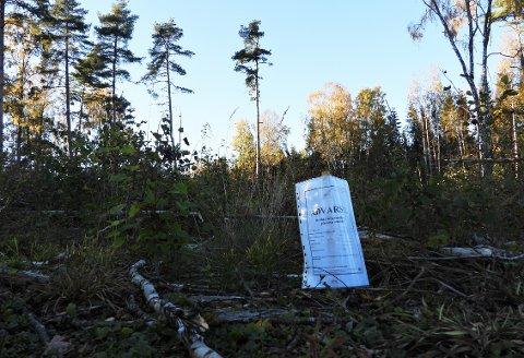 Har har det både i juni og i høst blitt brukt roundup for å ta livet av nye løvtrær.