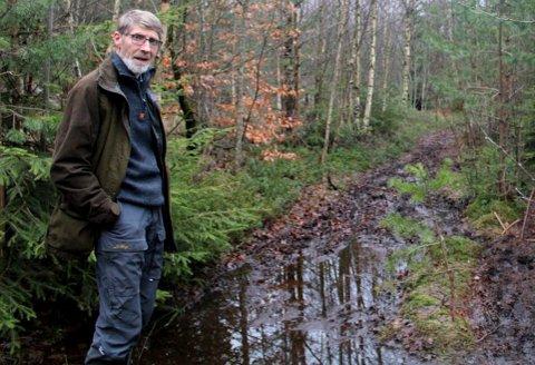 Tor Anton Andersen har god greie på skog og skogsdrift.