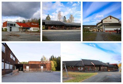 SKOLENE I SPILL: Åsen, Fossen, Lismarka, Fagernes og Messenlia skoler.