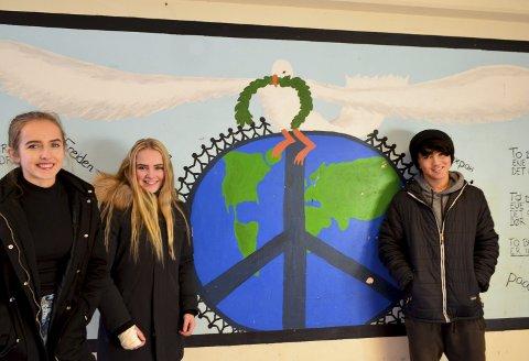 Alle er velkomne: Selma Høgås Røen (15), Annette Ruste Henriksen (15) og Nasrullah Hazara (15) fra Veienmarka ungdomsskole mener integrering er viktig, og nødvendig.