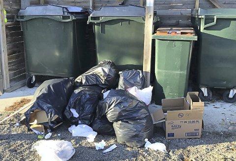 PROBLEM: I Odalsveien fylles avfallsdunkene opp av forbipasserende. Nå vil beboerne ha lås på dem.  (Illustrasjonsfoto).